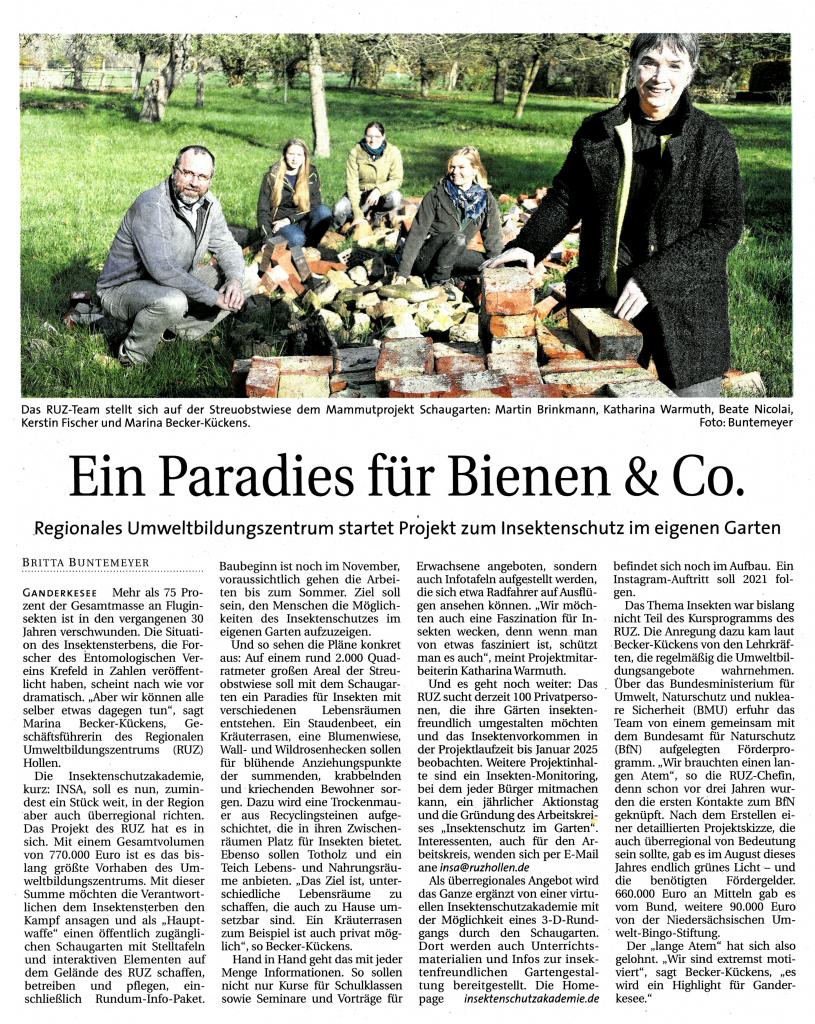 Zeitungsartikel aus dem Delme Report vom 15.11.2020.